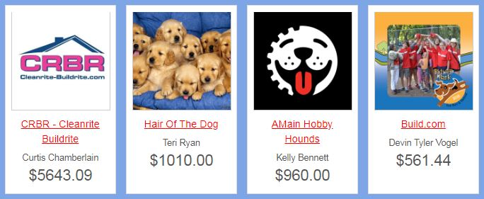 Top Team Fundraisers