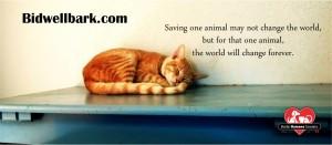 Change World Facebook Cover